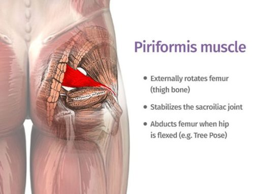 Piriformis Syndrome Vs Sciatica and what you need to know